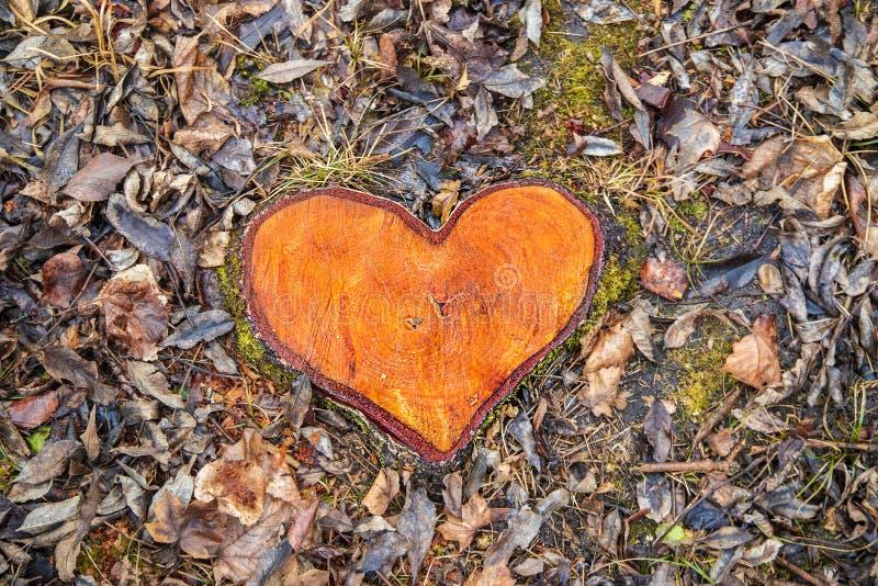 以心脏的形式树桩 库存照片