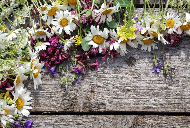 以框架的形式,野花花束在一张木桌上说谎 库存照片