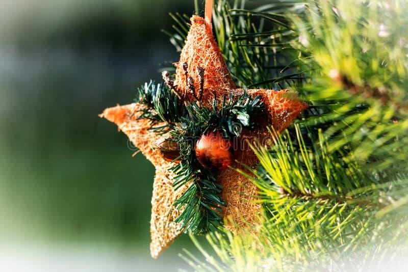 以橙色星的形式圣诞树玩具与垂悬在一棵活云杉的球 免版税库存图片