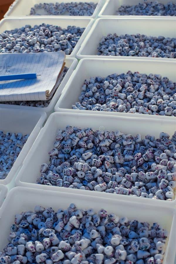 以猫的形式全国东方小珠被陈列在塑料盒的待售 库存照片