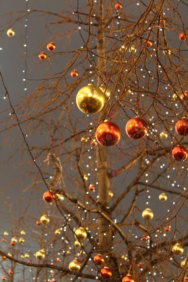 以红色和金子颜色的形式, bals没有叶子的树用圣诞节装饰装饰 图库摄影