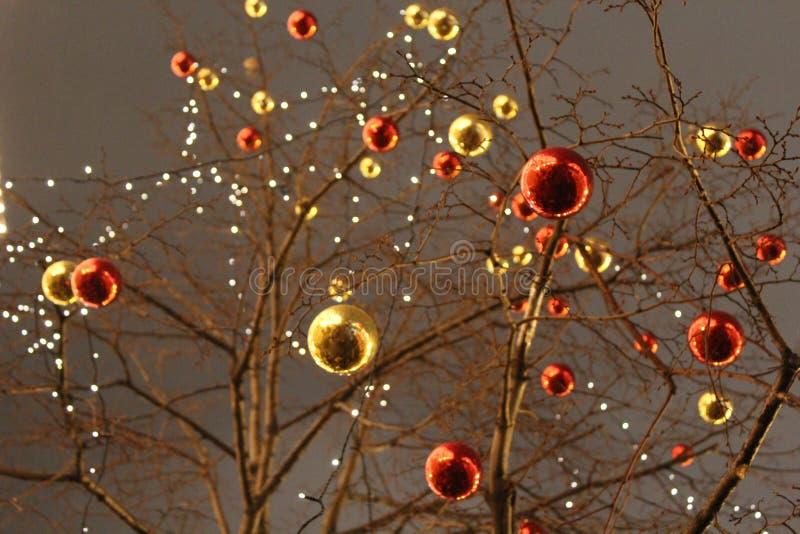以红色和金子颜色的形式, bals没有叶子的树用圣诞节装饰装饰 免版税库存照片