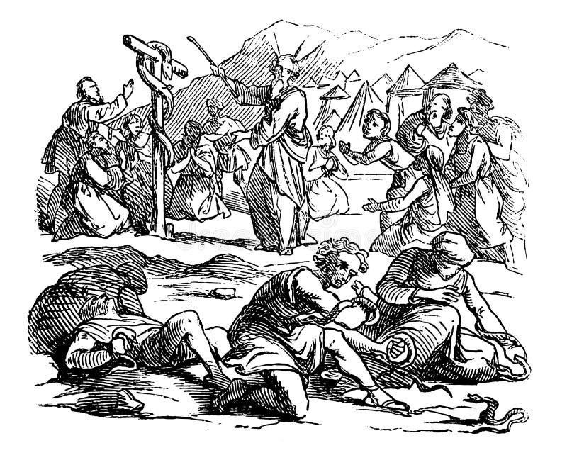 以色列人圣经的故事葡萄酒图画反对摩西,上帝送毒蛇作为处罚 库存例证