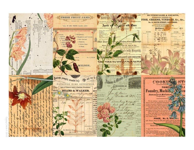 以花卉可打印的标签为特色的拼贴画 库存例证