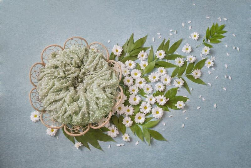 以花的形式篮子,戴西训练与绿色叶子,绿松石背景 库存图片