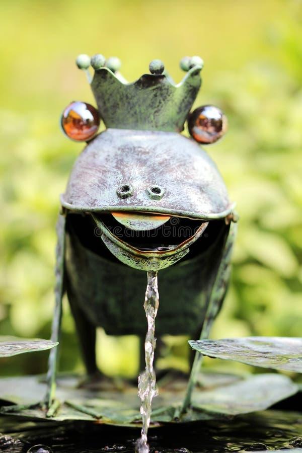 以青蛙的形式水比赛 免版税库存图片