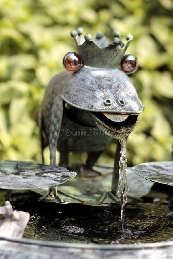 以青蛙的形式水比赛 库存照片