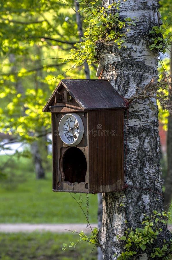 以鸟舍的形式,古老布谷鸟钟被栓对树 库存图片