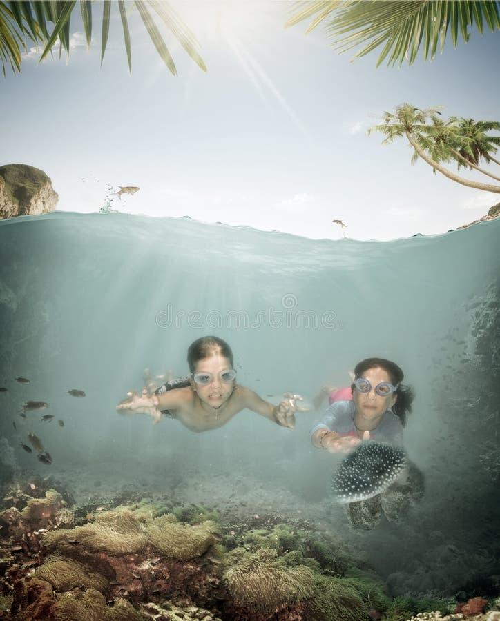 任意潜水 库存照片