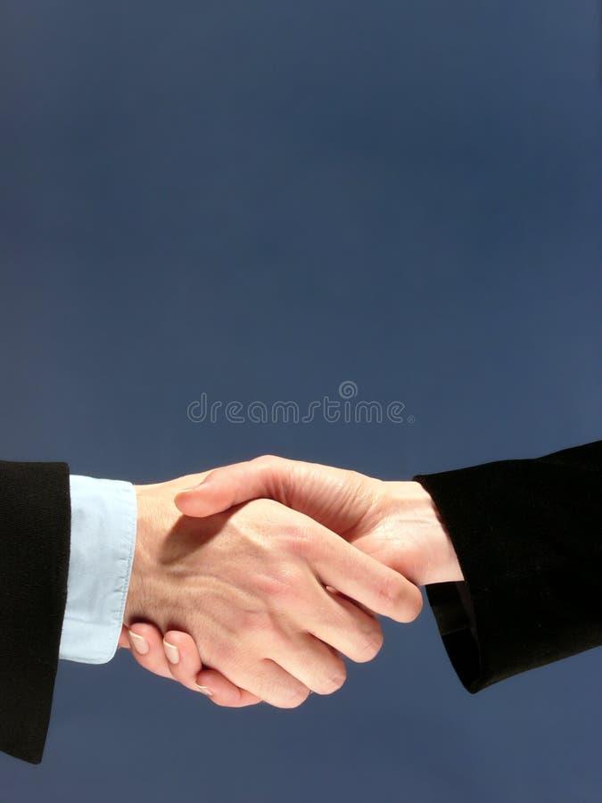 企业合伙企业 免版税库存照片