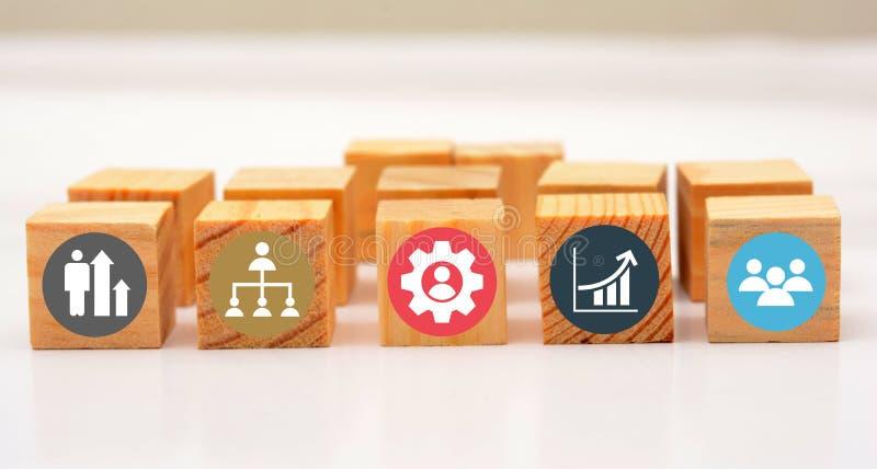 企业在木模子的成长和配合象 免版税库存图片