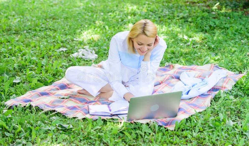 企业夫人户外自由职业者工作 企业野餐概念 开始做自由职业者的事务的步 网上事务 免版税库存照片
