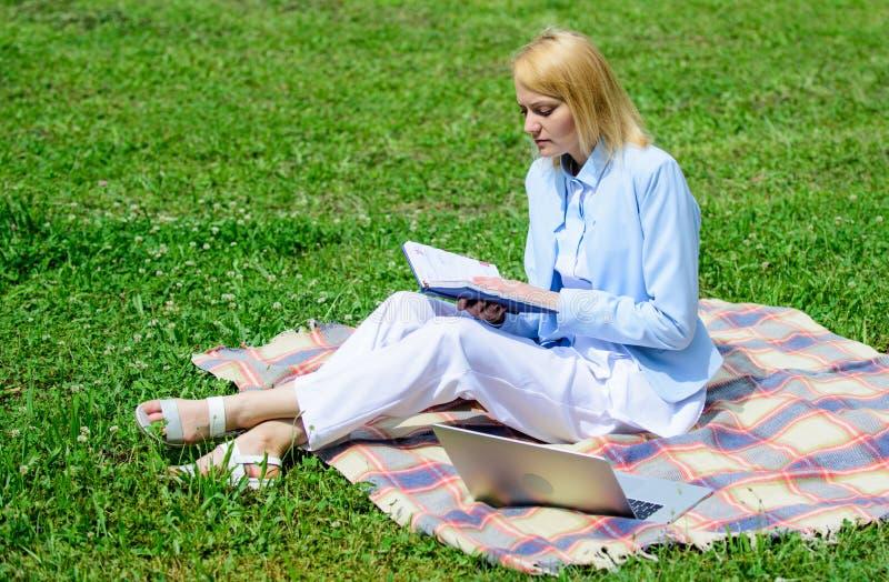 企业夫人户外自由职业者工作 网上企业想法概念 企业野餐概念 有膝上型计算机的妇女或 免版税库存照片
