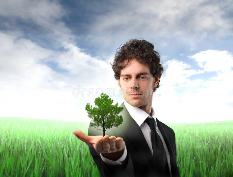 企业绿色 免版税库存照片