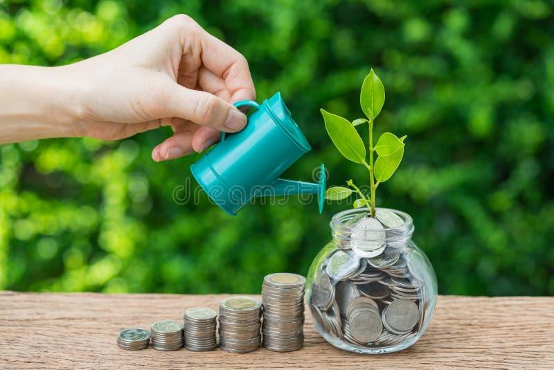 企业财务或成长投资概念用手水 免版税库存照片