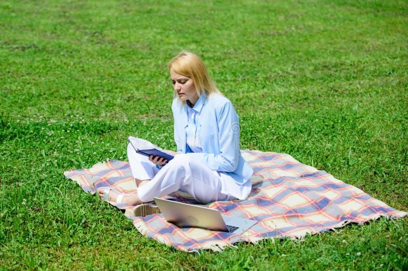 企业野餐概念 开始做自由职业者的事务的步 企业夫人户外自由职业者工作 网上事务 库存照片
