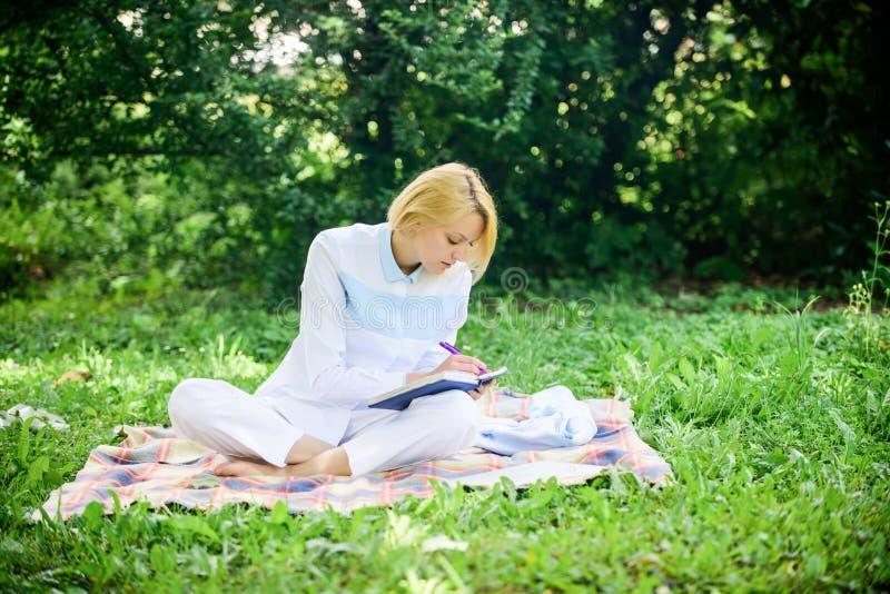 企业野餐概念 开始做自由职业者的事务的步 网上企业想法概念 有膝上型计算机的妇女或 免版税库存图片