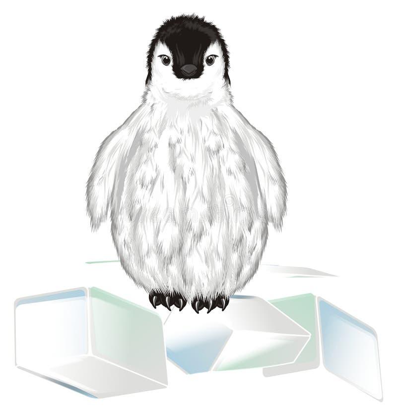 企鹅和许多冰 皇族释放例证