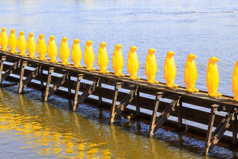 企鹅队列 免版税图库摄影