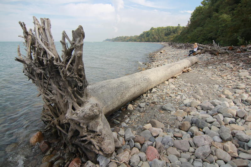 伊利湖的克利夫兰海岸在北美 免版税图库摄影