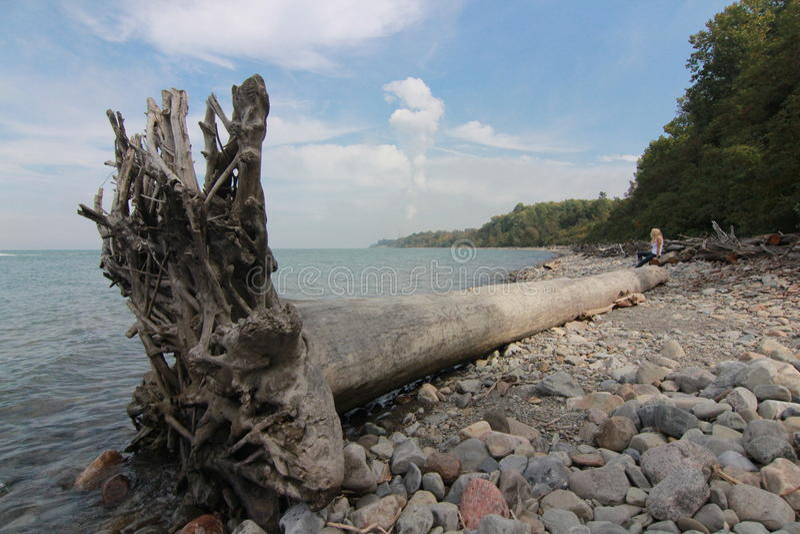 伊利湖的克利夫兰海岸 免版税库存照片