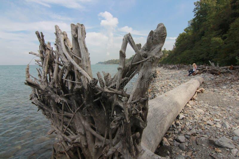 伊利湖的克利夫兰海岸 免版税库存图片