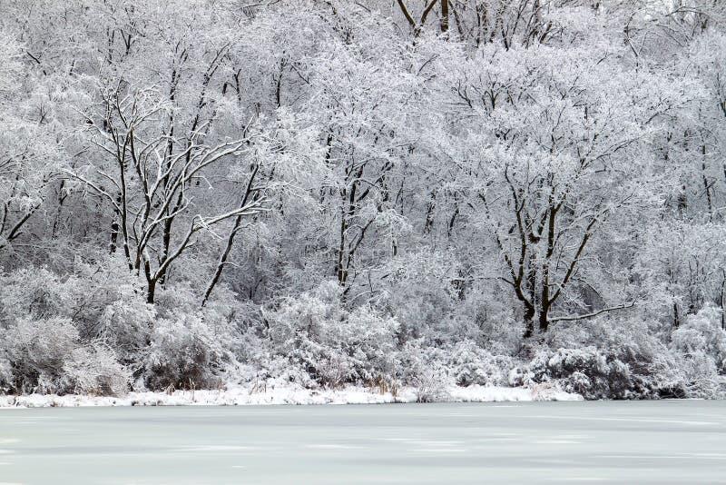 伊利诺伊湖刺穿降雪 免版税图库摄影
