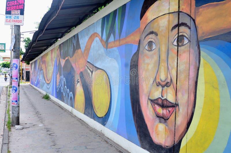 伊基托斯-秘鲁 免版税库存照片