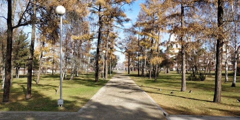 伊尔库次克公园,俄罗斯 免版税图库摄影