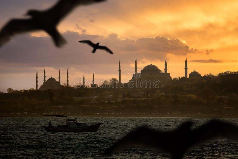 伊斯坦布尔偶象射击 库存图片