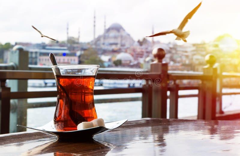 伊斯坦布尔土耳其的首都 免版税库存照片