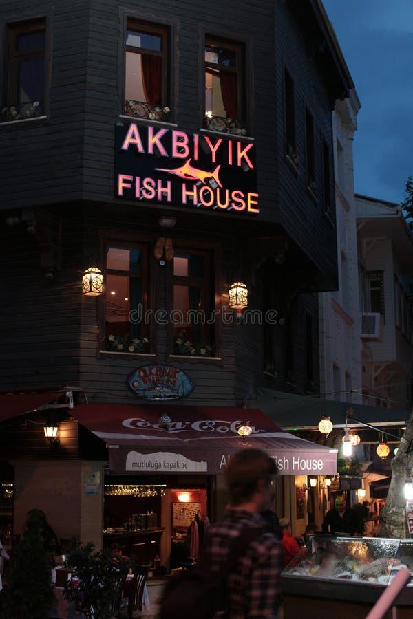 伊斯坦布尔在夜之前 库存照片