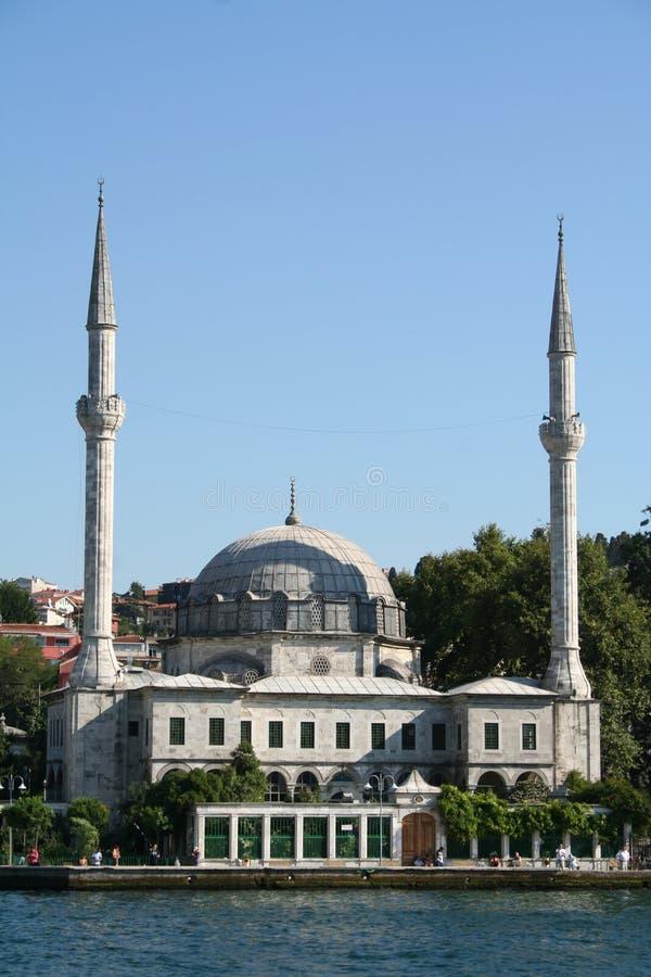 伊斯坦布尔清真寺火鸡 免版税库存图片