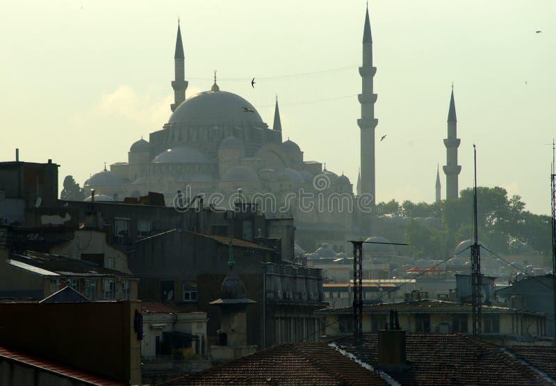 伊斯坦布尔,土耳其,都市风景 库存照片