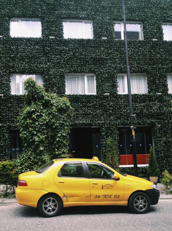 伊斯坦布尔绿色街道  免版税库存照片