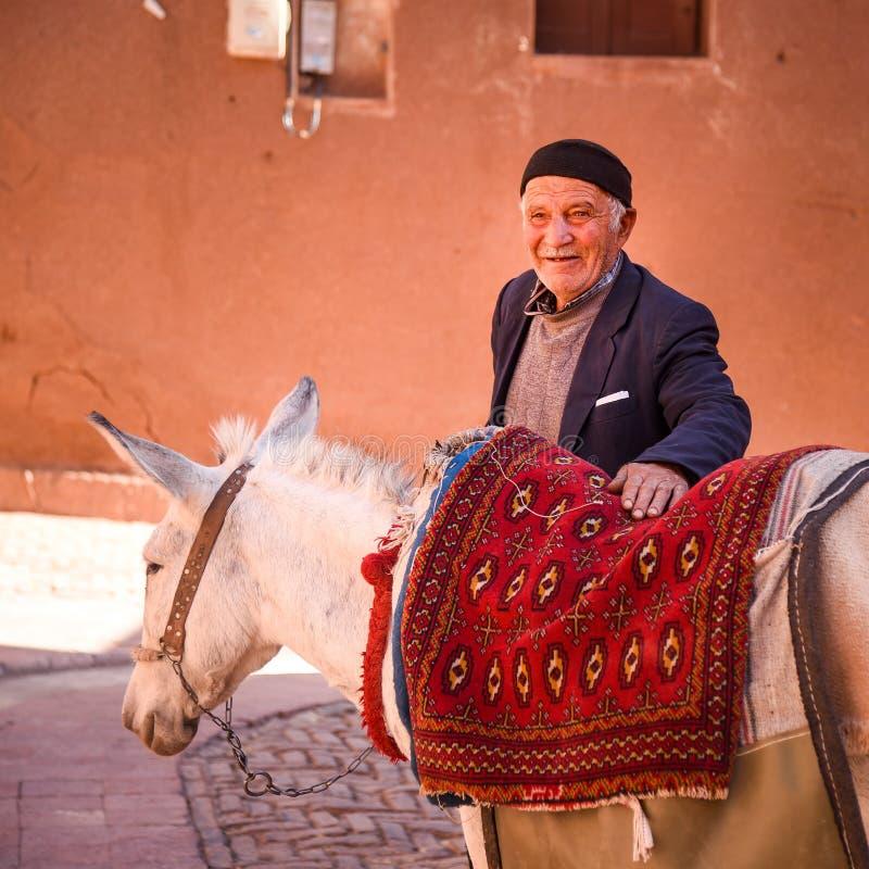 伊朗人和白色小马 库存照片