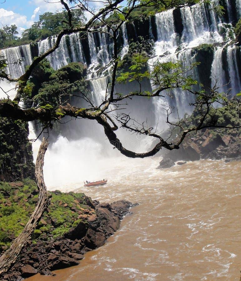 伊瓜苏瀑布在阿根廷 图库摄影