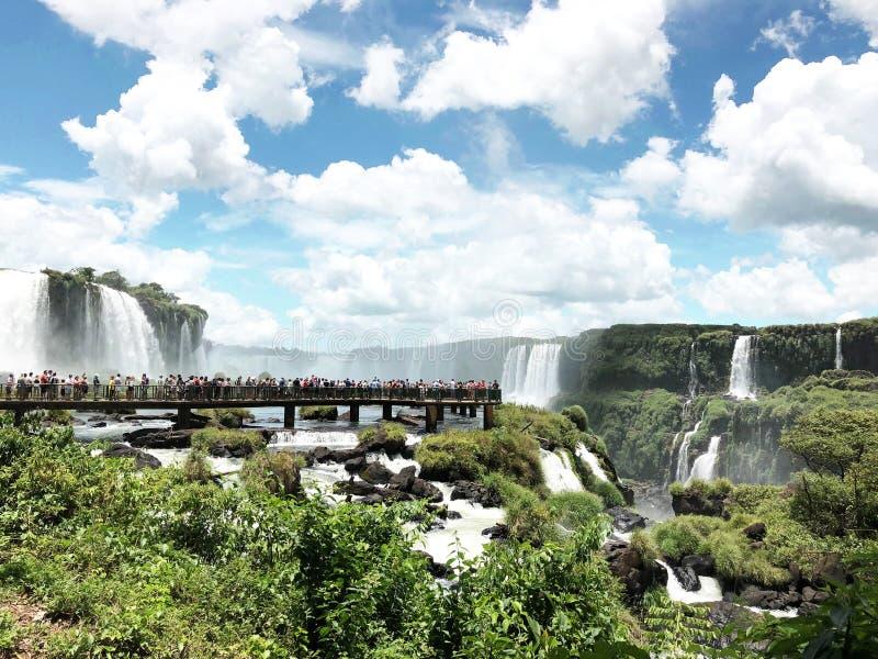 伊瓜苏瀑布是其中一世界的著名自然瀑布,在巴西和阿根廷的边界 图库摄影
