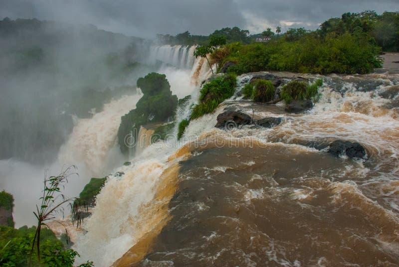伊瓜苏瀑布是瀑布最多的系列在行星的,位于巴西、阿根廷和巴拉圭 库存照片