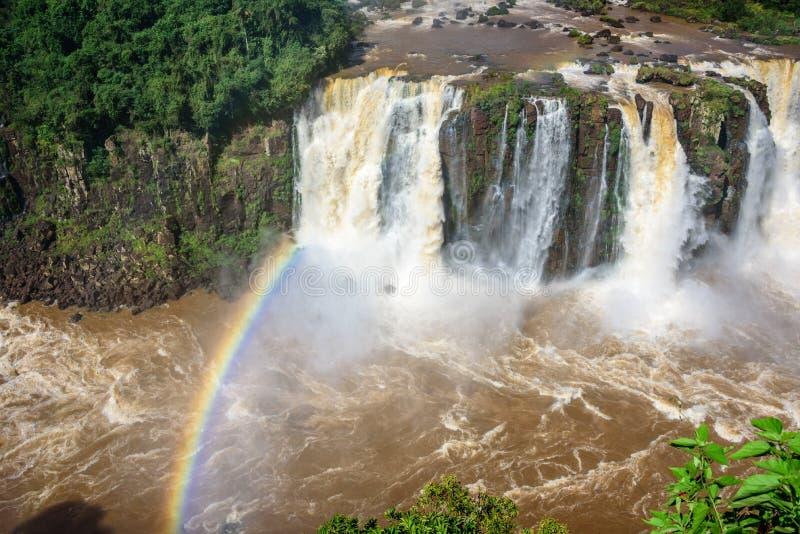 伊瓜苏瀑布落下的水彩虹和看法有广泛的热带森林和发怒的河的在Iguacu国家公园 免版税库存图片