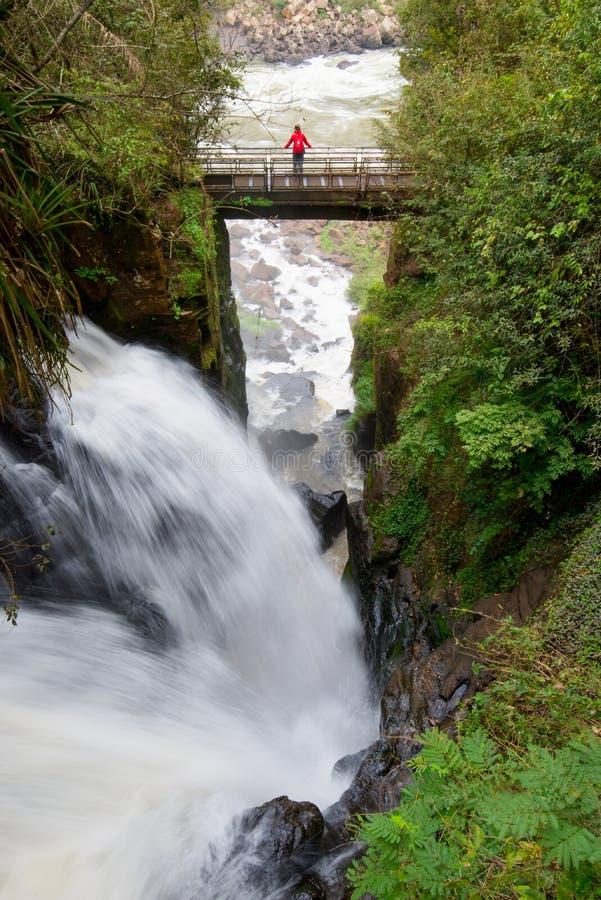 伊瓜苏瀑布,世界,Argenitna边的瀑布最多的系列  库存图片
