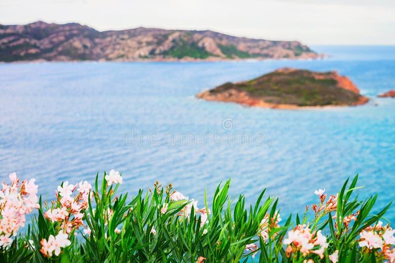 伊索拉Molara和Tavolara海岛在地中海撒丁岛 免版税库存照片