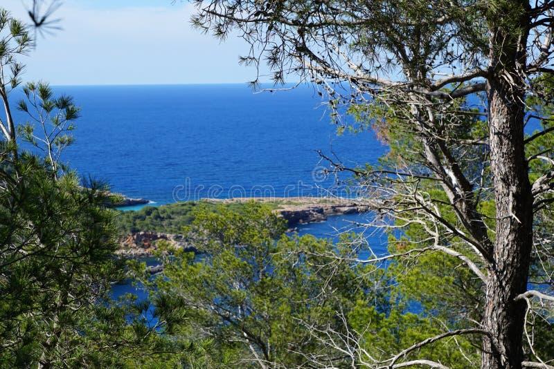 伊维萨岛海滩 免版税库存照片