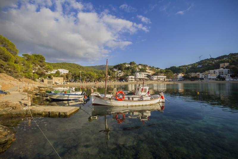 伊维萨岛, Cala Vadellla 免版税库存图片