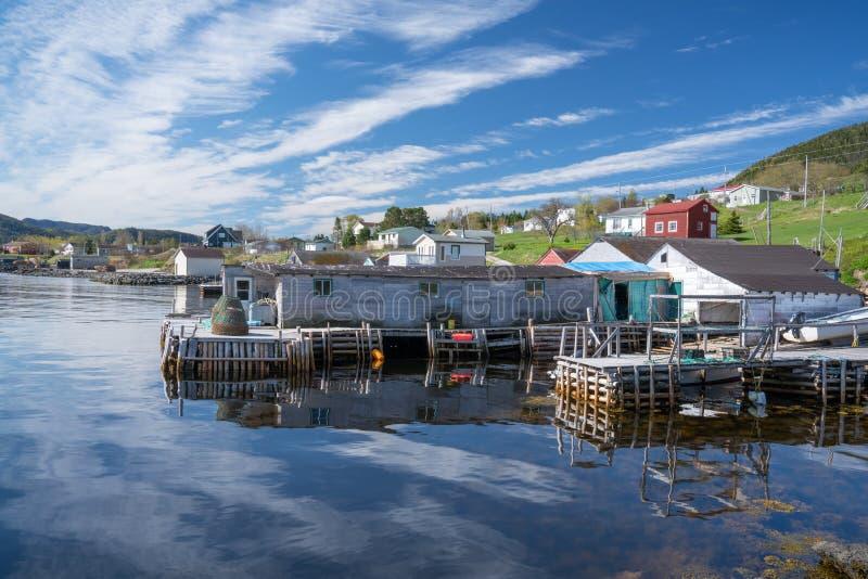 伍迪纽芬兰的点渔村 库存照片