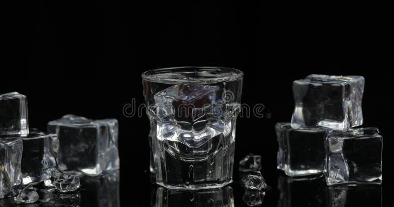 伏特加酒射击与冰块的反对黑背景 图库摄影