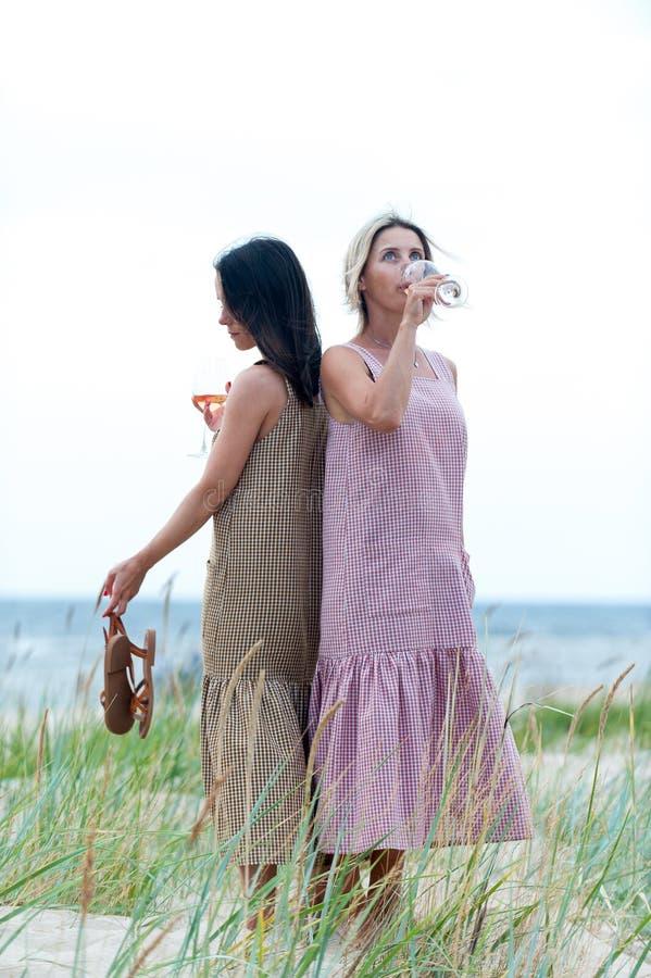 休息和喝白色夏天酒的两名年轻可爱的妇女 库存图片