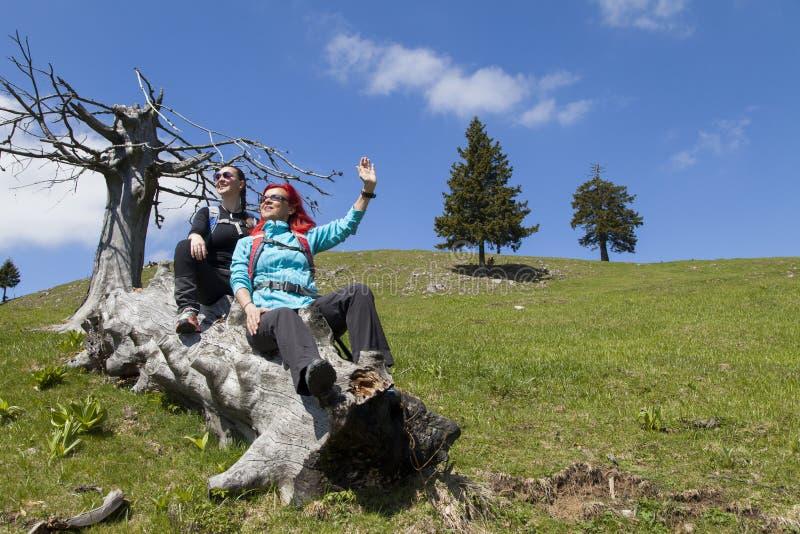 休息和挥动在老树干的愉快的远足者你好在山自然在晴天 库存照片