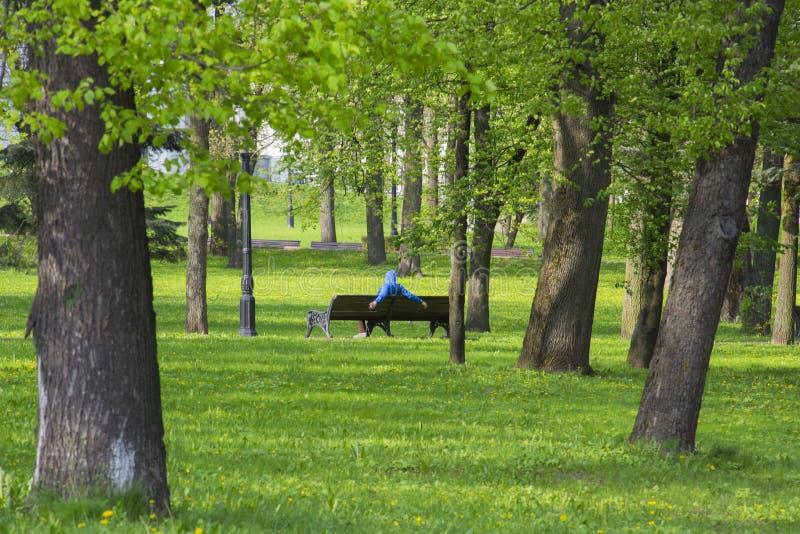 休息在一条长凳的公园在米斯克,白俄罗斯 免版税图库摄影