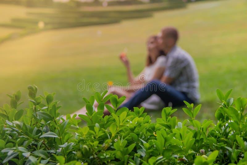 休息在浪漫感觉的公园的爱恋的夫妇 库存图片